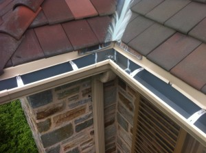 Gutter and Downspout Cleaning